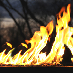 technology burner system